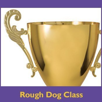 Conformation Rough Dog Class prize button for the shop.