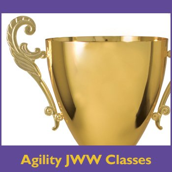 Agility JWW Classes