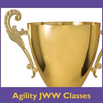 Agility JWW Classes