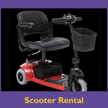 Scooter Rental for shop.