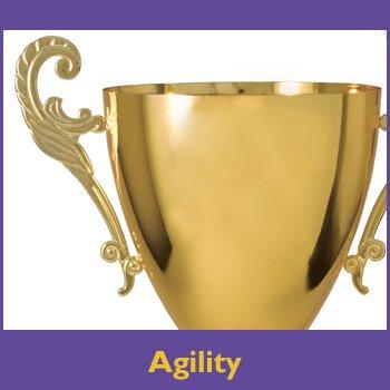 Agility Trophy Sponsorship