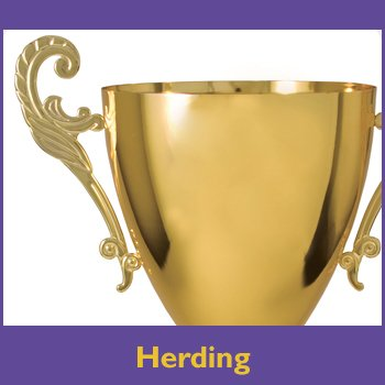 Herding Trophy Sponsorship