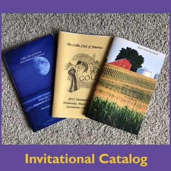 Invitational catalog for shop.