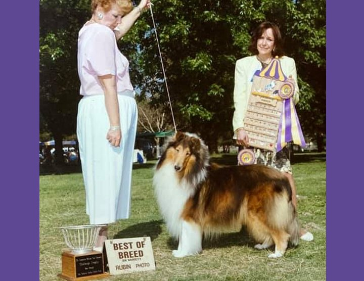 Martha Ramer showing to Best of Breed